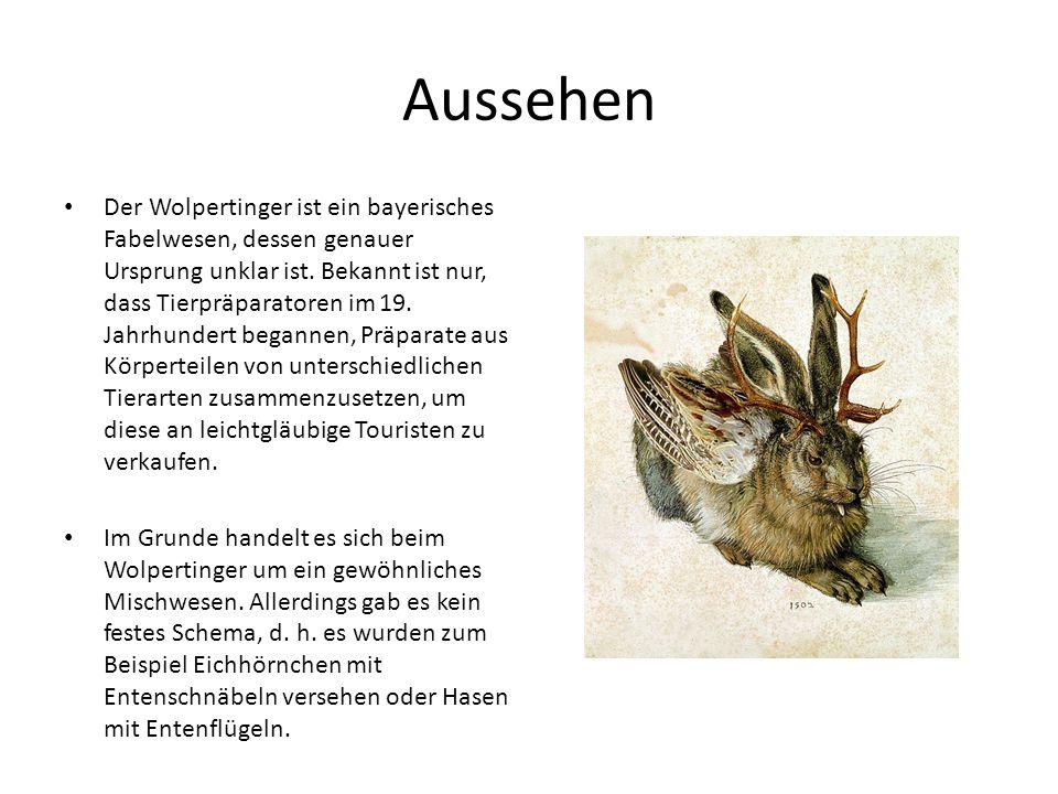 Aussehen Der Wolpertinger ist ein bayerisches Fabelwesen, dessen genauer Ursprung unklar ist. Bekannt ist nur, dass Tierpräparatoren im 19. Jahrhunder