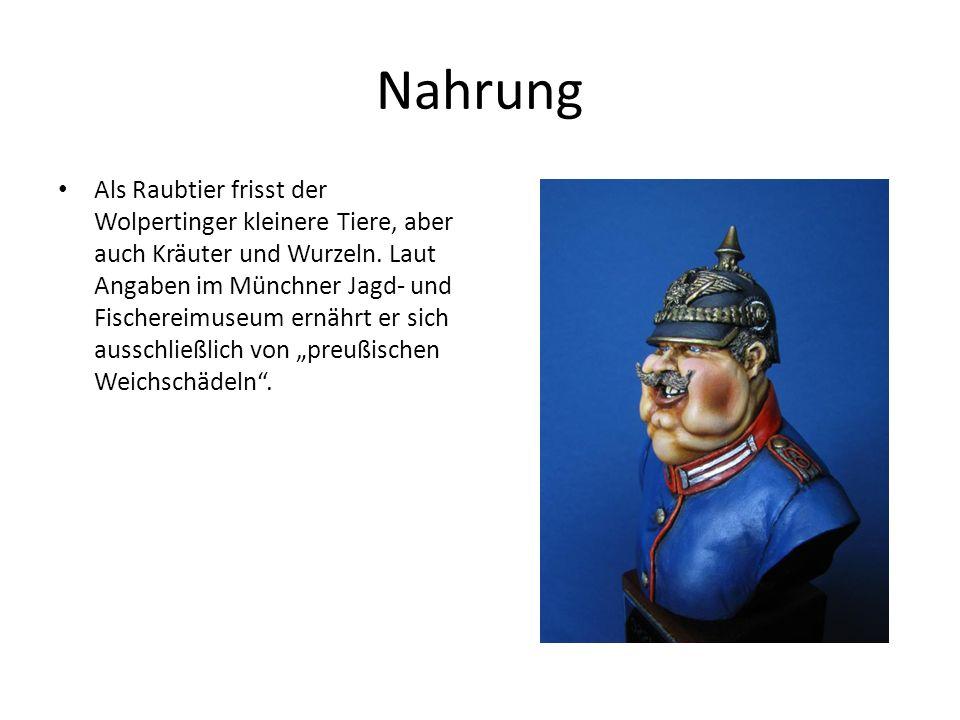 Nahrung Als Raubtier frisst der Wolpertinger kleinere Tiere, aber auch Kräuter und Wurzeln. Laut Angaben im Münchner Jagd- und Fischereimuseum ernährt