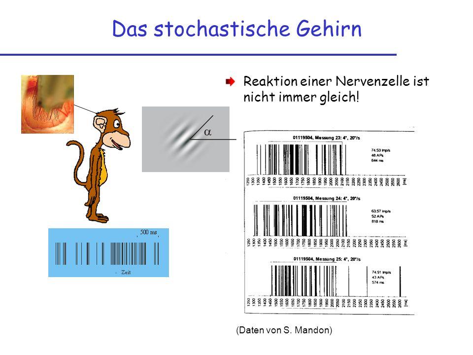 Das stochastische Gehirn Reaktion einer Nervenzelle ist nicht immer gleich! (Daten von S. Mandon)