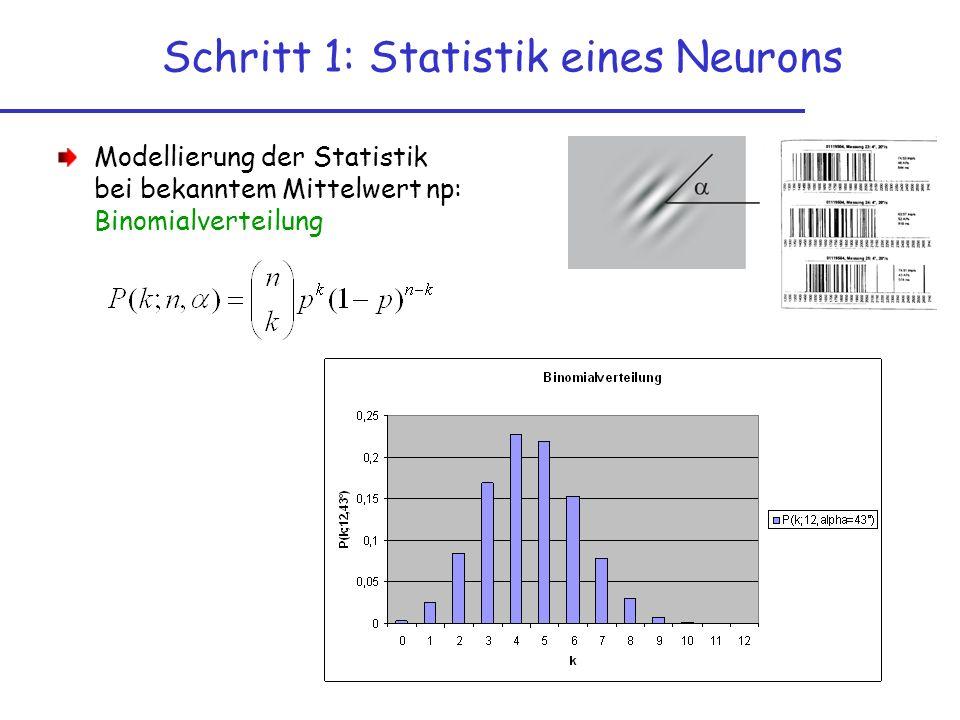 Modellierung der Statistik bei bekanntem Mittelwert np: Binomialverteilung Schritt 1: Statistik eines Neurons
