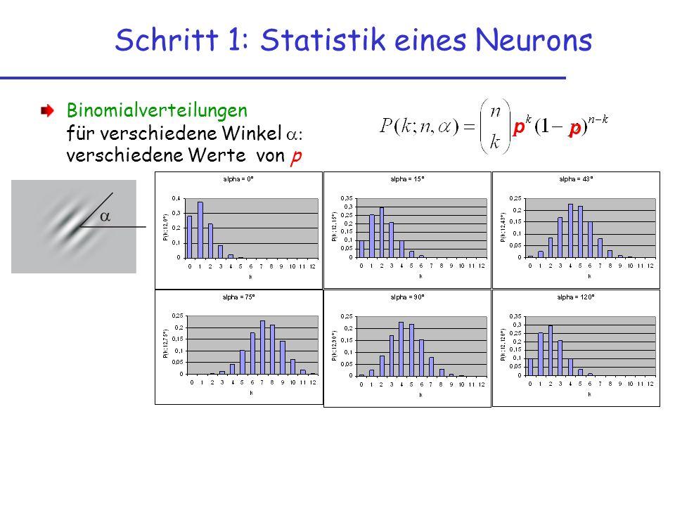 Binomialverteilungen für verschiedene Winkel verschiedene Werte von p Schritt 1: Statistik eines Neurons p p