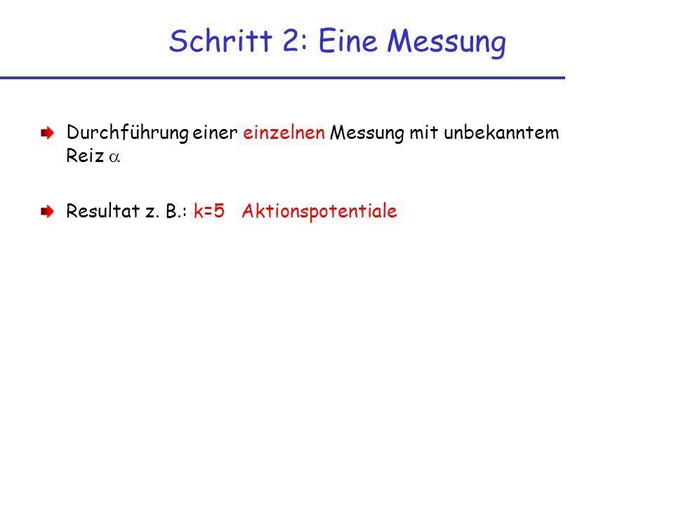 Schritt 2: Eine Messung Durchführung einer einzelnen Messung mit unbekanntem Reiz Resultat z. B.: k=5 Aktionspotentiale