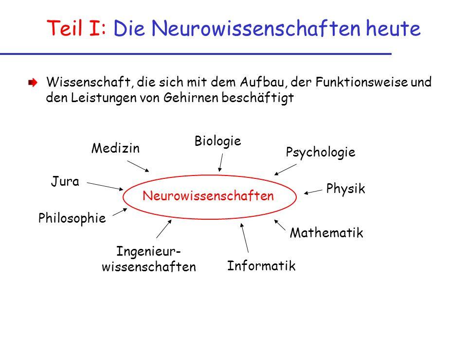 Teil I: Die Neurowissenschaften heute Wissenschaft, die sich mit dem Aufbau, der Funktionsweise und den Leistungen von Gehirnen beschäftigt Neurowissenschaften Medizin Biologie Psychologie Physik Mathematik Informatik Ingenieur- wissenschaften Philosophie Jura
