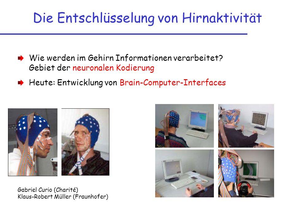 Die Entschlüsselung von Hirnaktivität Wie werden im Gehirn Informationen verarbeitet? Gebiet der neuronalen Kodierung Heute: Entwicklung von Brain-Com