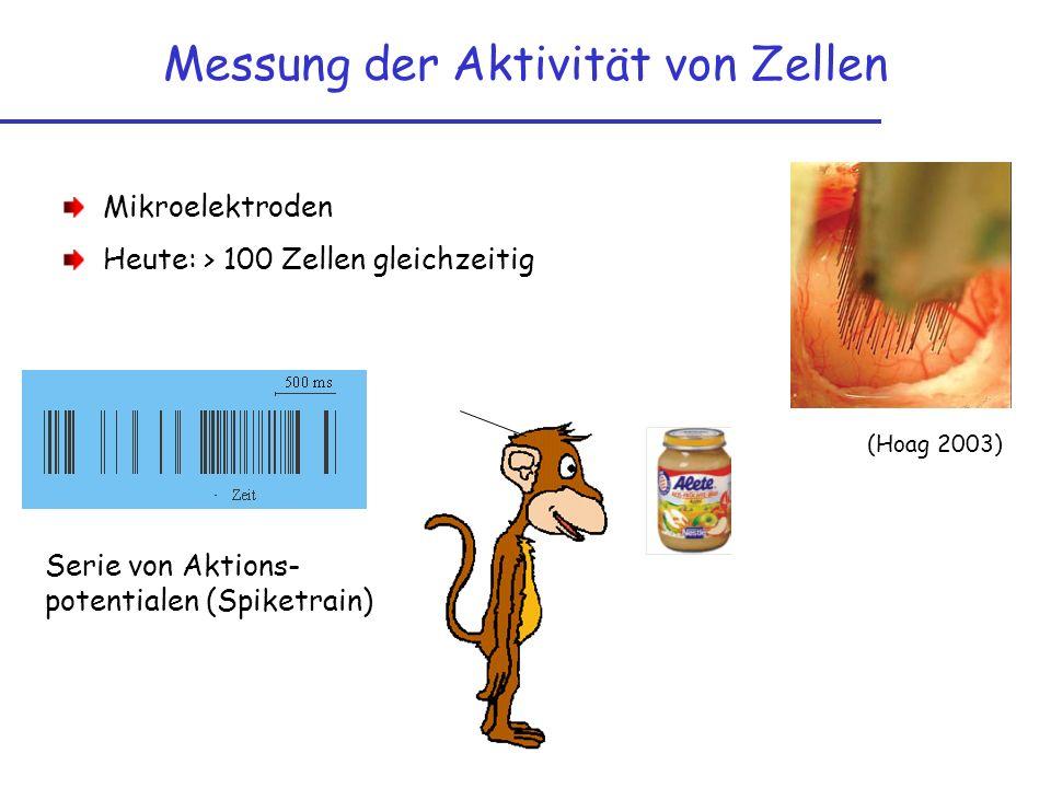 Projekt in Klasse 12 Auswertung von Original-Daten Erörterung über Tierversuche