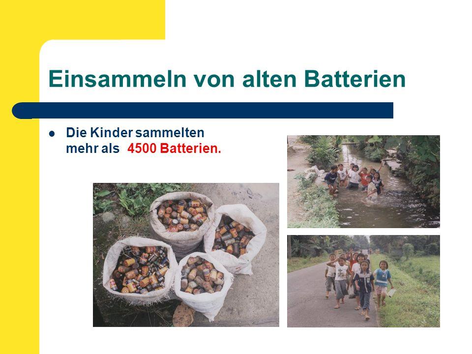 Einsammeln von alten Batterien Die Kinder sammelten mehr als 4500 Batterien.