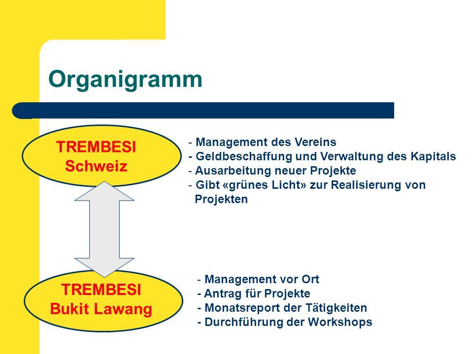 Organigramm TREMBESI Schweiz TREMBESI Bukit Lawang - Management des Vereins - Geldbeschaffung und Verwaltung des Kapitals - Ausarbeitung neuer Projekte - Gibt «grünes Licht» zur Realisierung von Projekten - Management vor Ort - Antrag für Projekte - Monatsreport der Tätigkeiten - Durchführung der Workshops