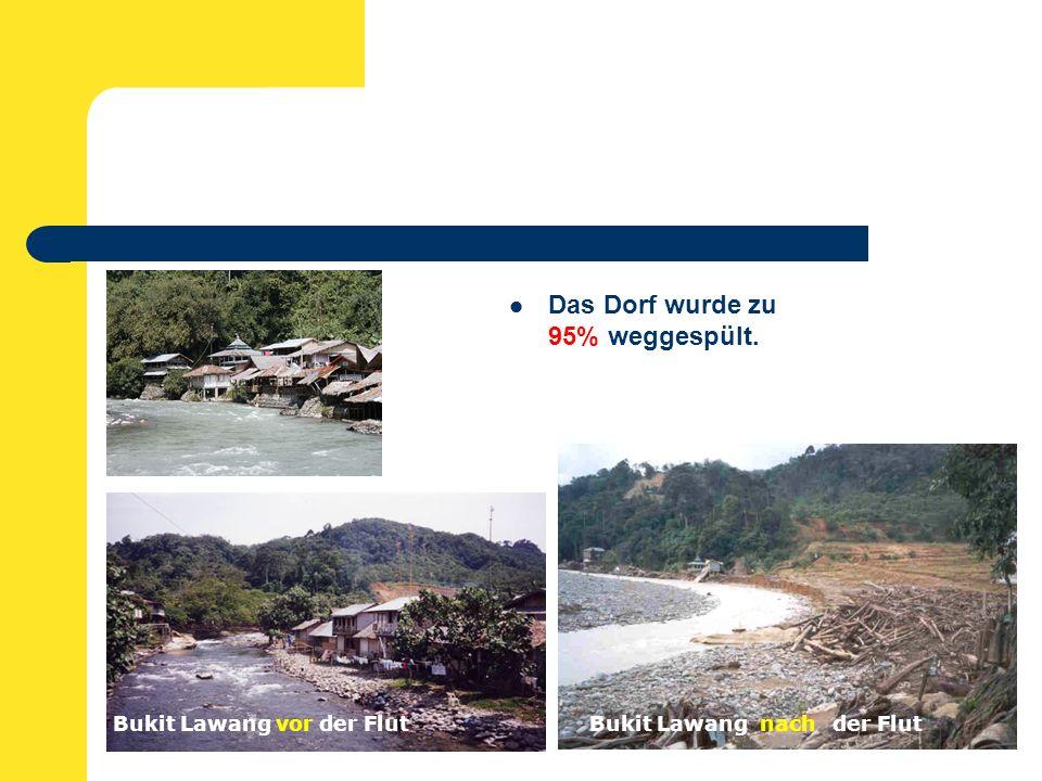 Das Dorf wurde zu 95% weggespült. Bukit Lawang vor der FlutBukit Lawang nach der Flut