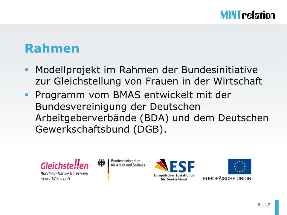 Seite 2 Rahmen Modellprojekt im Rahmen der Bundesinitiative zur Gleichstellung von Frauen in der Wirtschaft Programm vom BMAS entwickelt mit der Bunde