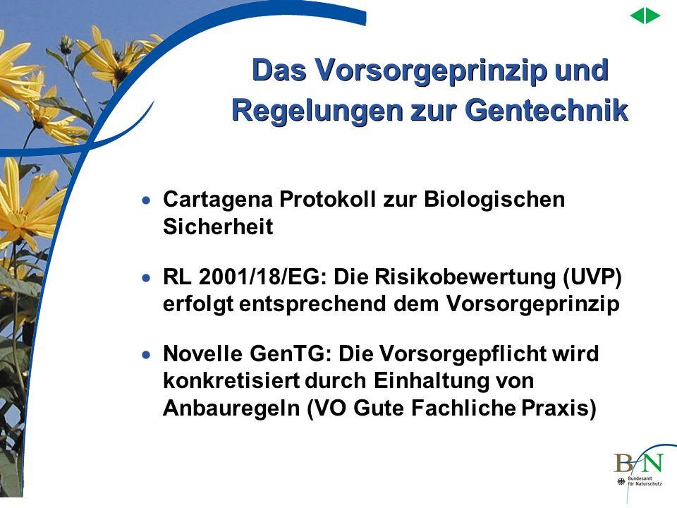 Das Vorsorgeprinzip und Regelungen zur Gentechnik Cartagena Protokoll zur Biologischen Sicherheit RL 2001/18/EG: Die Risikobewertung (UVP) erfolgt ent