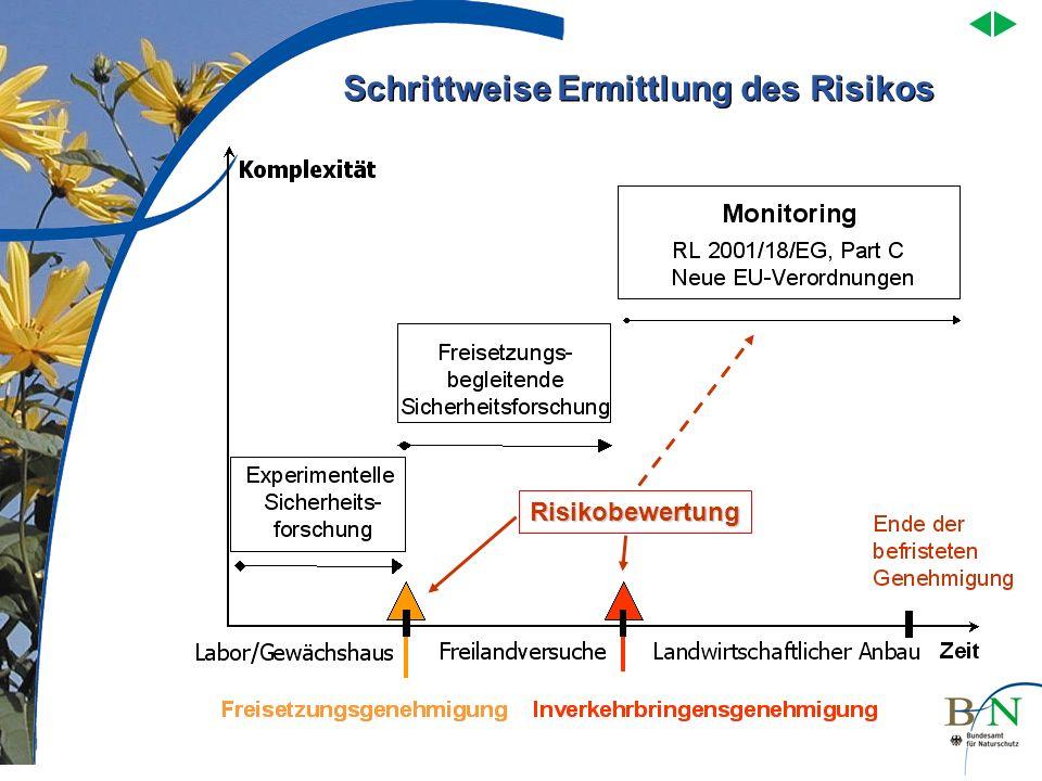 Risikobewertung Schrittweise Ermittlung des Risikos