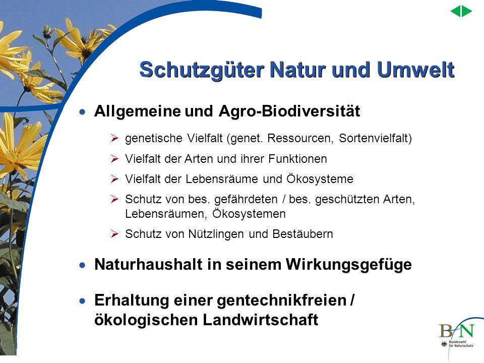 Schutzgüter Natur und Umwelt Allgemeine und Agro-Biodiversität Naturhaushalt in seinem Wirkungsgefüge Erhaltung einer gentechnikfreien / ökologischen