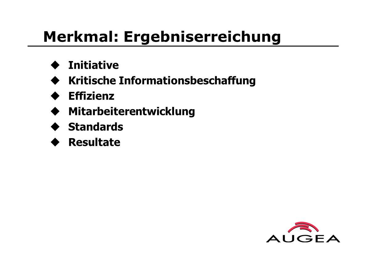 Merkmal: Ergebniserreichung Initiative Kritische Informationsbeschaffung Effizienz Mitarbeiterentwicklung Standards Resultate