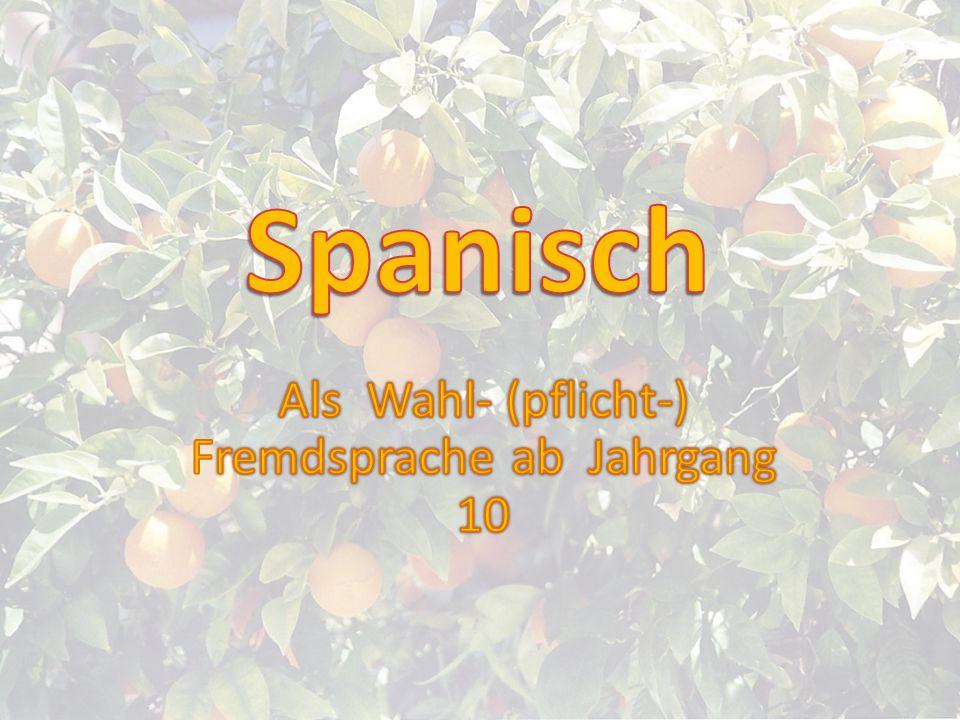 Weltsprache Spanisch ca.