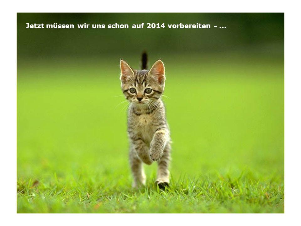 Jetzt müssen wir uns schon auf 2014 vorbereiten -...