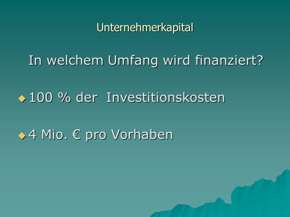 Unternehmerkapital In welchem Umfang wird finanziert.