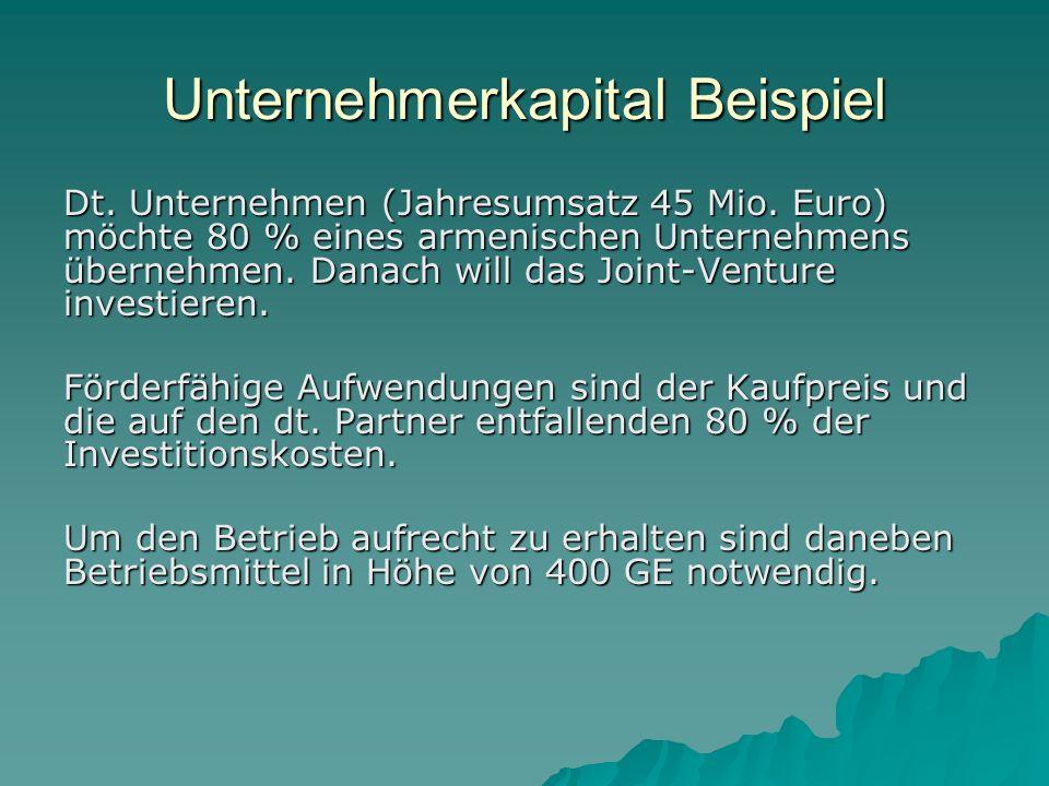 Unternehmerkapital Beispiel Dt.Unternehmen (Jahresumsatz 45 Mio.