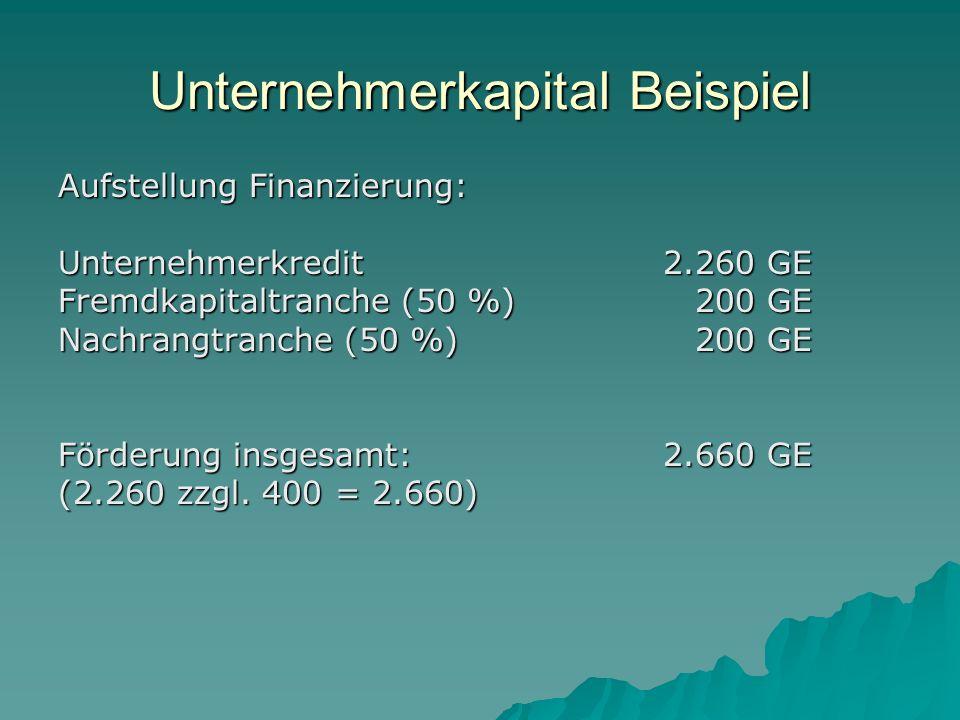 Unternehmerkapital Beispiel Aufstellung Finanzierung: Unternehmerkredit2.260 GE Fremdkapitaltranche (50 %)200 GE Nachrangtranche (50 %)200 GE Förderung insgesamt: 2.660 GE (2.260 zzgl.
