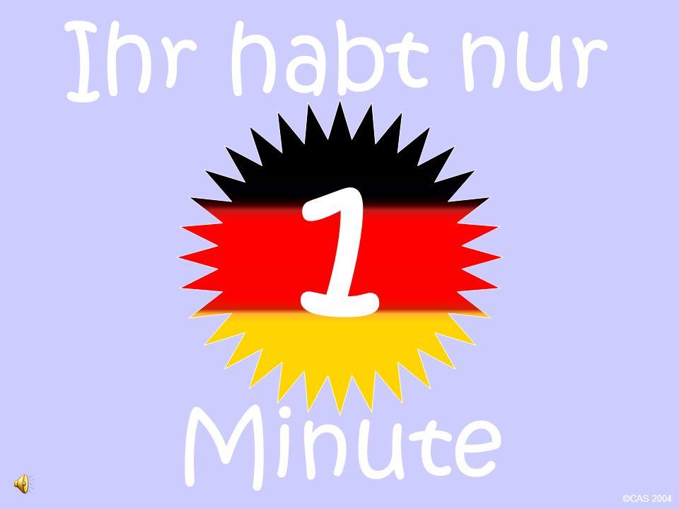 Ihr habt nur Minute ©CAS 2004 1