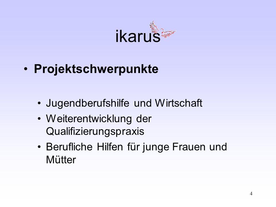 5 ikarus Projektaufbau Gesamtprojektleitung Facharbeitskreis Projektbeirat 3 Teilprojektarbeitskreis