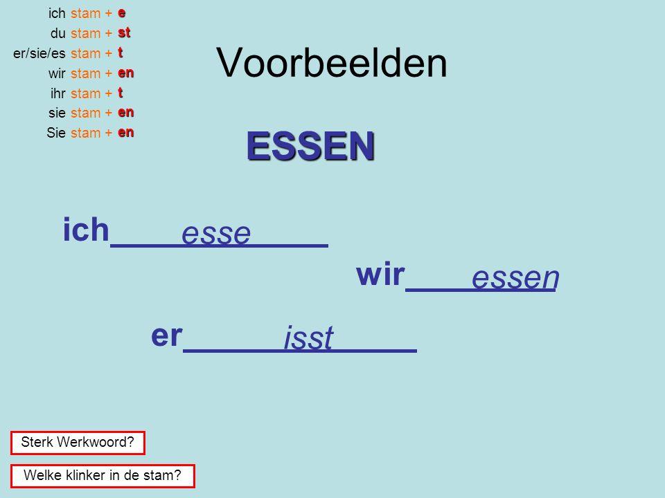Voorbeelden ich du er/sie/es wir ihr sie Sie stam + esttentenen Sterk Werkwoord.