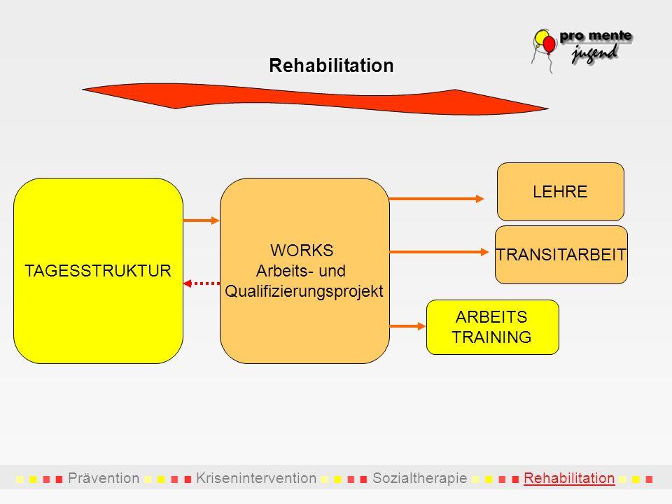 TAGESSTRUKTUR ARBEITS TRAINING TRANSITARBEIT WORKS Arbeits- und Qualifizierungsprojekt LEHRE Rehabilitation