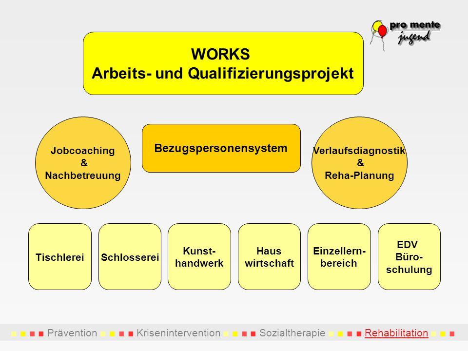 Prävention Krisenintervention Sozialtherapie Rehabilitation WORKS Arbeits- und Qualifizierungsprojekt TischlereiSchlosserei Haus wirtschaft Kunst- han