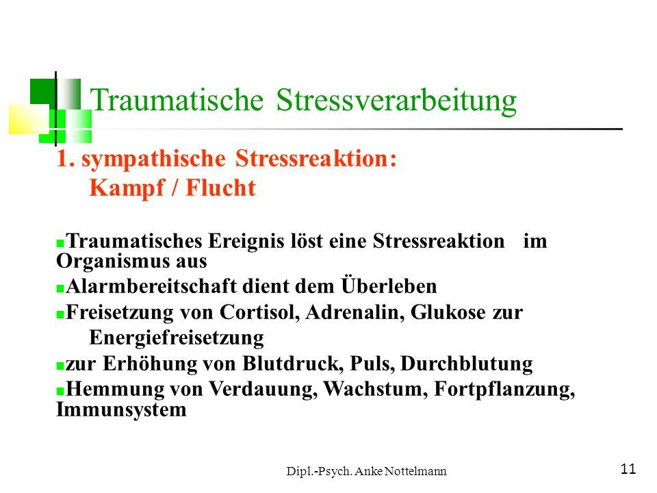 Dipl.-Psych. Anke Nottelmann 11 Traumatische Stressverarbeitung 1. sympathische Stressreaktion: Kampf / Flucht Traumatisches Ereignis löst eine Stress