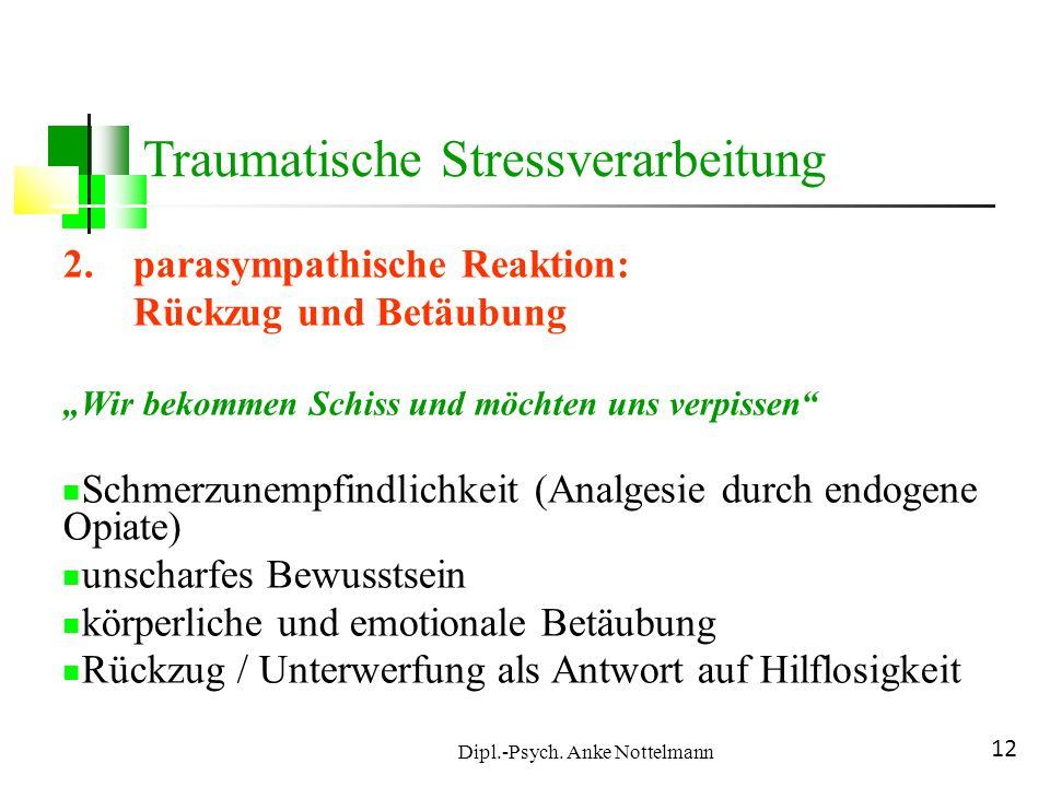 Dipl.-Psych. Anke Nottelmann 12 Traumatische Stressverarbeitung 2.parasympathische Reaktion: Rückzug und Betäubung Wir bekommen Schiss und möchten uns