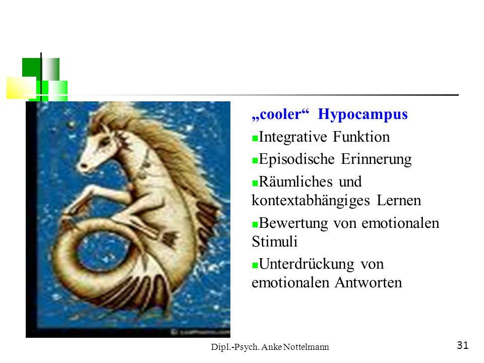 Dipl.-Psych. Anke Nottelmann 31 cooler Hypocampus Integrative Funktion Episodische Erinnerung Räumliches und kontextabhängiges Lernen Bewertung von em
