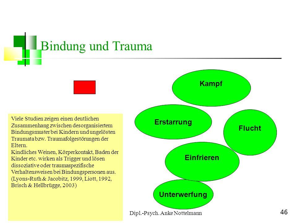Dipl.-Psych. Anke Nottelmann 46 Unterwerfung Einfrieren Erstarrung Flucht Kampf Bindung und Trauma Viele Studien zeigen einen deutlichen Zusammenhang