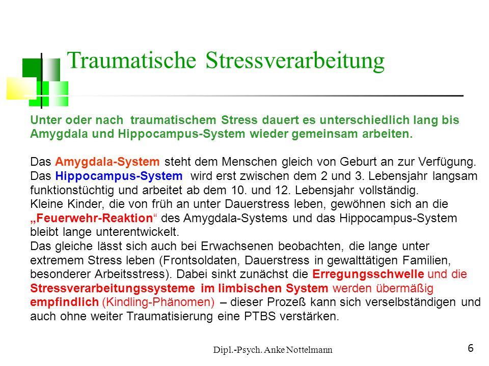 Dipl.-Psych. Anke Nottelmann 6 Unter oder nach traumatischem Stress dauert es unterschiedlich lang bis Amygdala und Hippocampus-System wieder gemeinsa