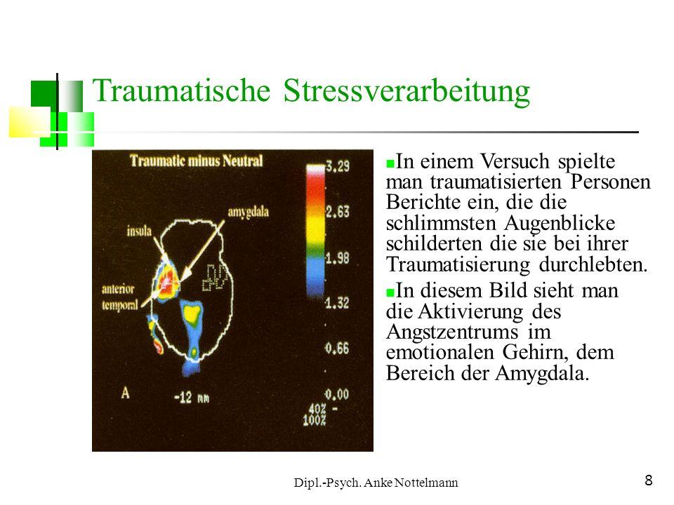 Dipl.-Psych. Anke Nottelmann 8 Traumatische Stressverarbeitung In einem Versuch spielte man traumatisierten Personen Berichte ein, die die schlimmsten