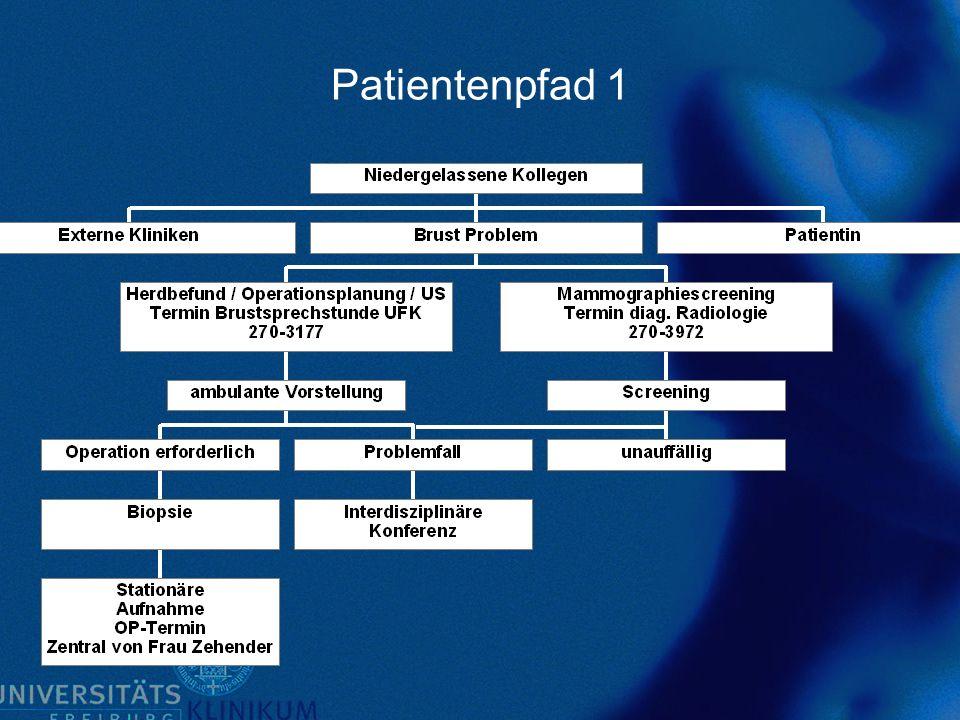 Patientenpfad 2
