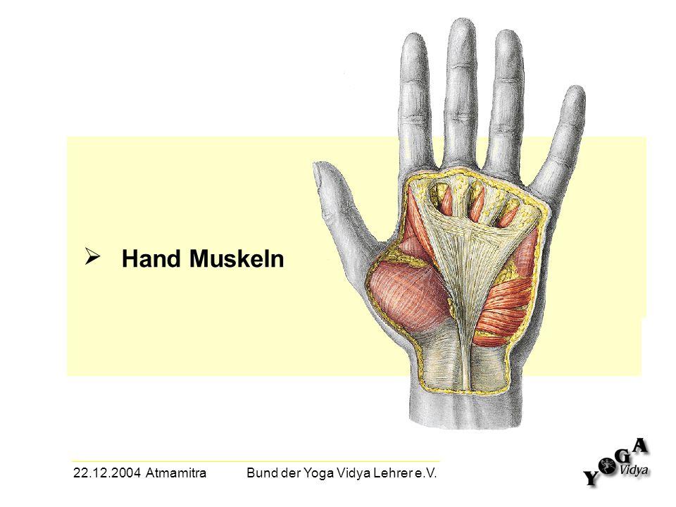 22.12.2004 Atmamitra Bund der Yoga Vidya Lehrer e.V. Hand Muskeln