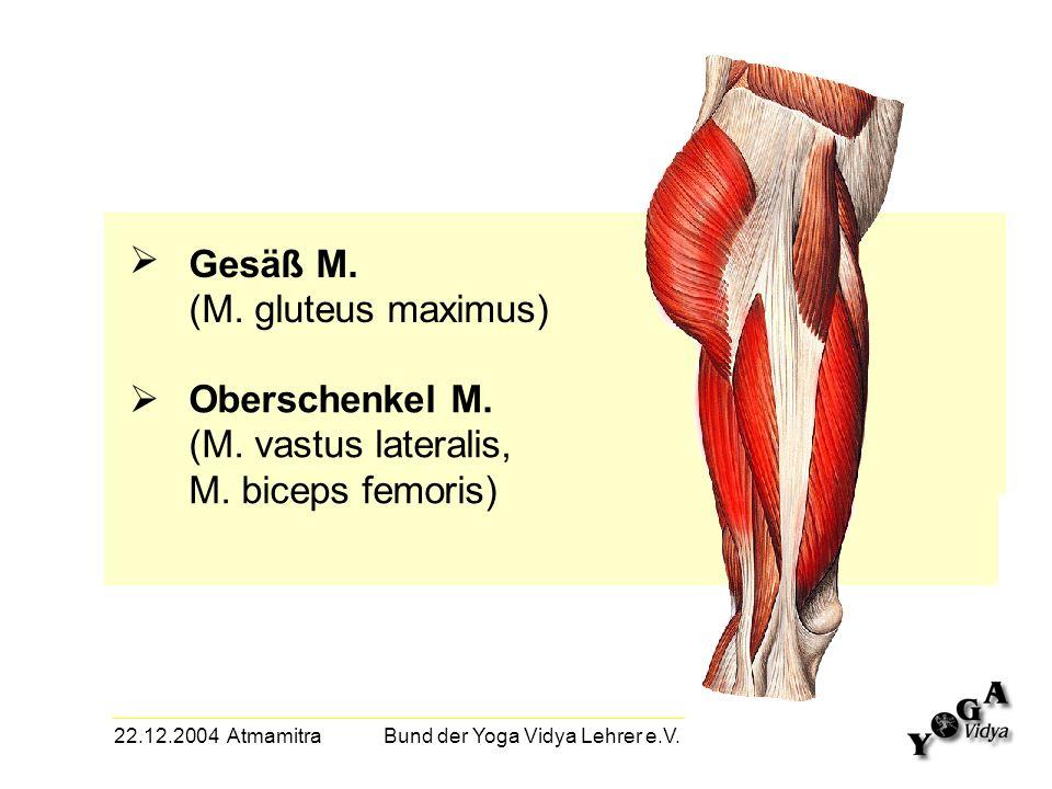 22.12.2004 Atmamitra Bund der Yoga Vidya Lehrer e.V. Gesäß M. (M. gluteus maximus) Oberschenkel M. (M. vastus lateralis, M. biceps femoris)