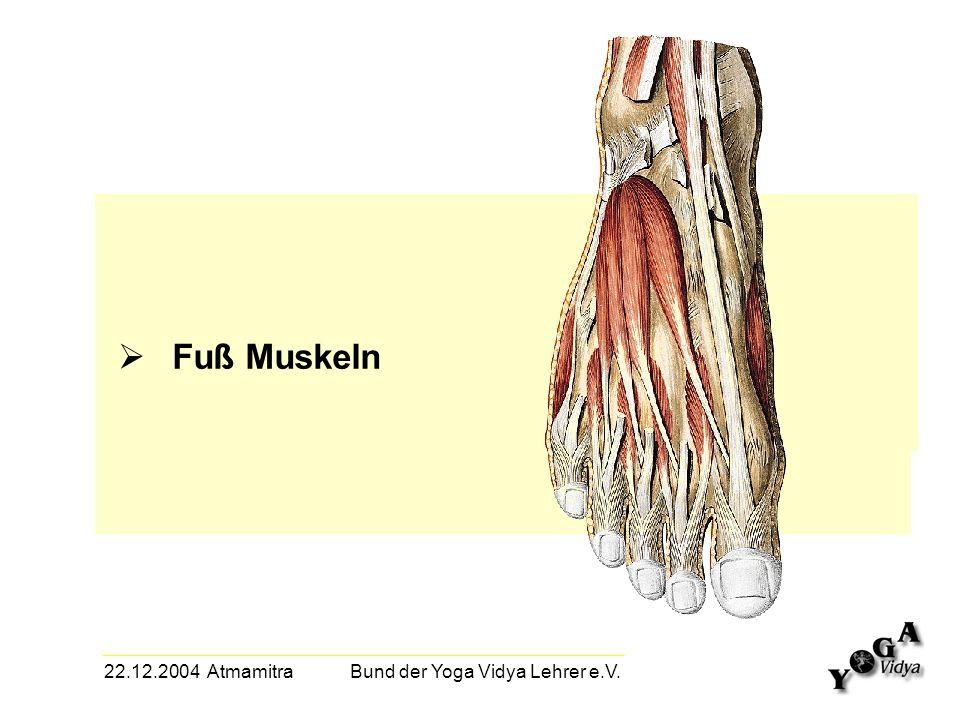 22.12.2004 Atmamitra Bund der Yoga Vidya Lehrer e.V. Fuß Muskeln