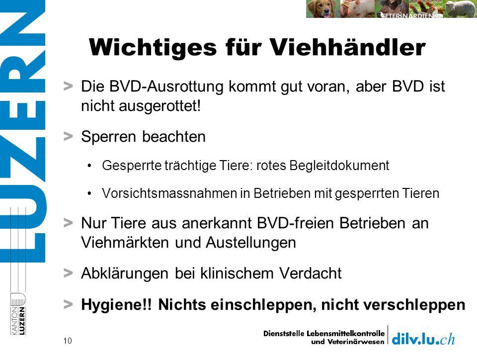 Wichtiges für Viehhändler > Die BVD-Ausrottung kommt gut voran, aber BVD ist nicht ausgerottet.