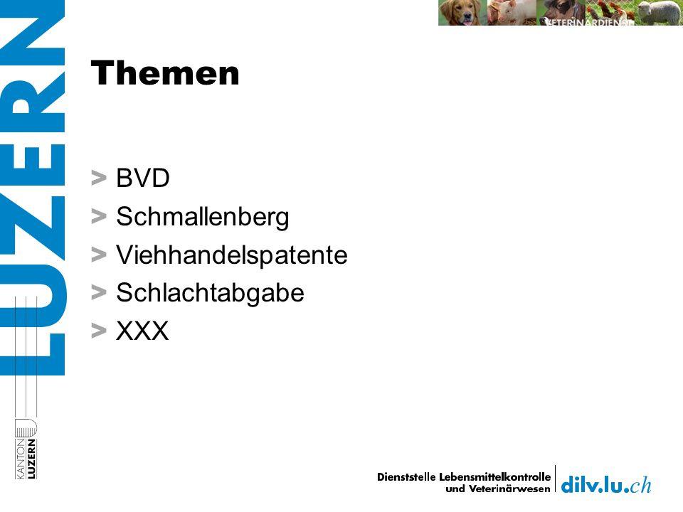 Themen > BVD > Schmallenberg > Viehhandelspatente > Schlachtabgabe > XXX