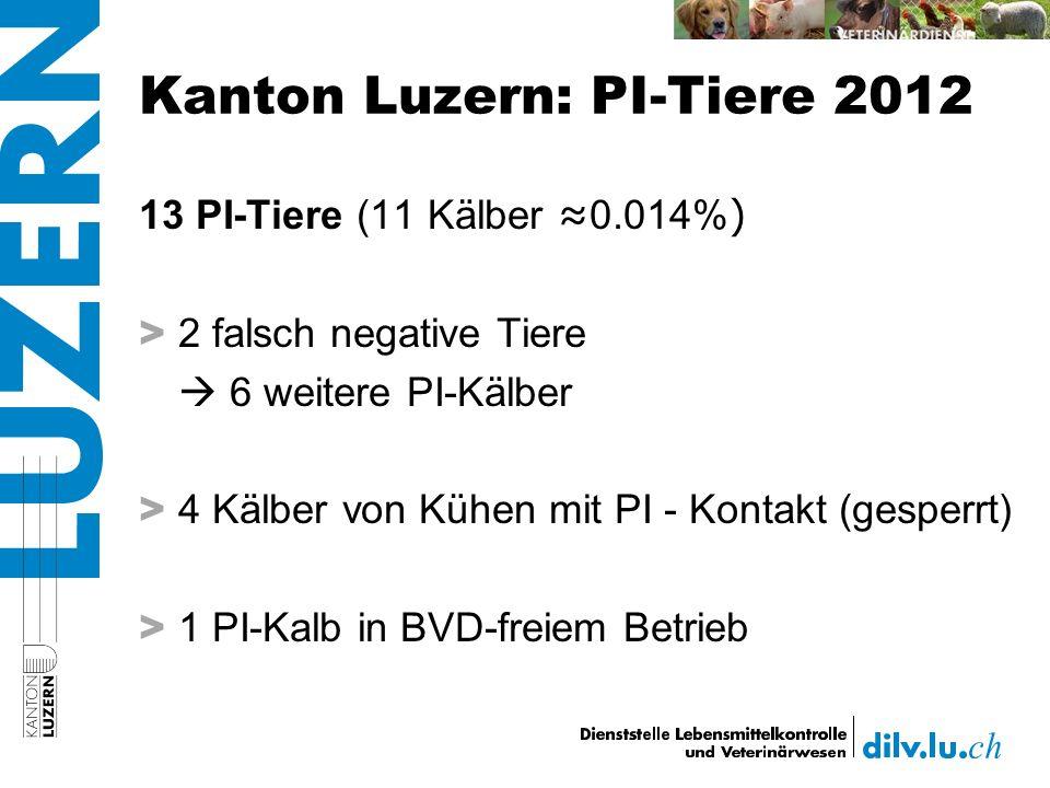 Kanton Luzern: PI-Tiere 2012 13 PI-Tiere (11 Kälber 0.014% ) > 2 falsch negative Tiere 6 weitere PI-Kälber > 4 Kälber von Kühen mit PI - Kontakt (gesperrt) > 1 PI-Kalb in BVD-freiem Betrieb