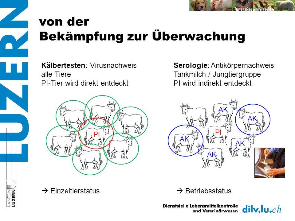 von der Bekämpfung zur Überwachung PI AK Kälbertesten: Virusnachweis alle Tiere PI-Tier wird direkt entdeckt Einzeltierstatus Serologie: Antikörpernachweis Tankmilch / Jungtiergruppe PI wird indirekt entdeckt Betriebsstatus