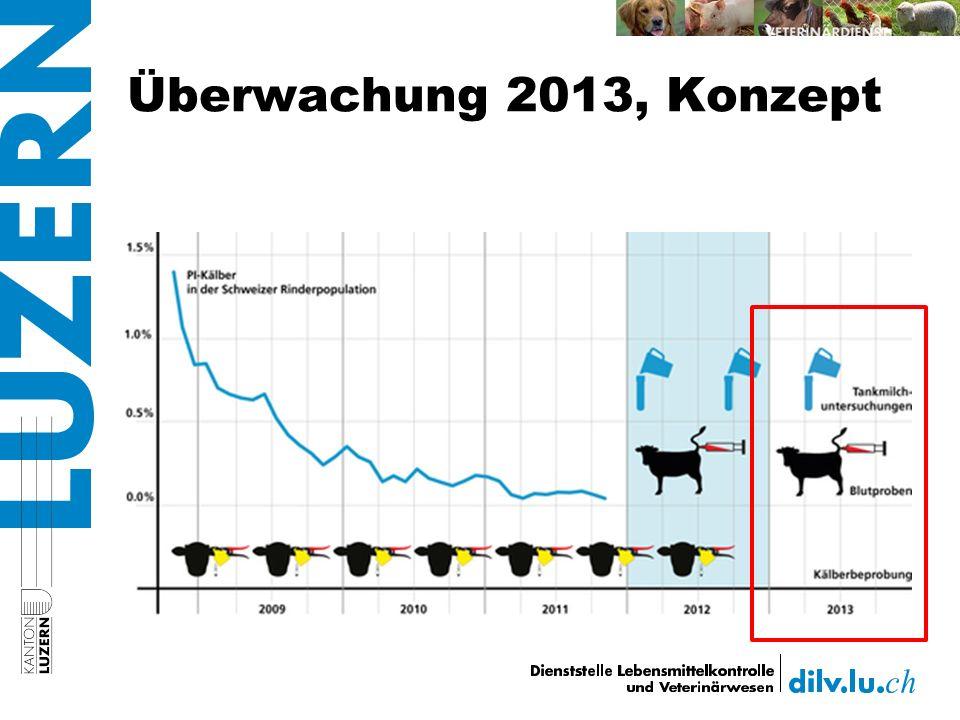 Überwachung 2013, Konzept