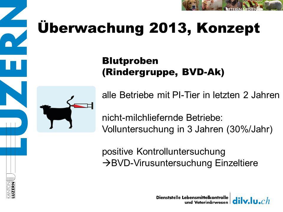 Überwachung 2013, Konzept Blutproben (Rindergruppe, BVD-Ak) alle Betriebe mit PI-Tier in letzten 2 Jahren nicht-milchliefernde Betriebe: Volluntersuchung in 3 Jahren (30%/Jahr) positive Kontrolluntersuchung BVD-Virusuntersuchung Einzeltiere