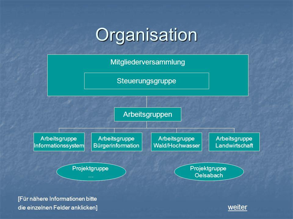 Organisation Mitgliederversammlung Steuerungsgruppe Arbeitsgruppe Informationssystem Arbeitsgruppe Bürgerinformation Arbeitsgruppe Wald/Hochwasser Arb