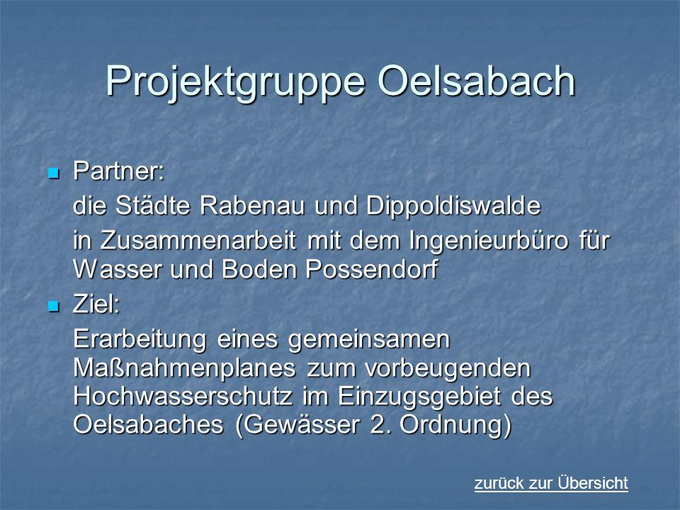 Projektgruppe Oelsabach Partner: Partner: die Städte Rabenau und Dippoldiswalde in Zusammenarbeit mit dem Ingenieurbüro für Wasser und Boden Possendor