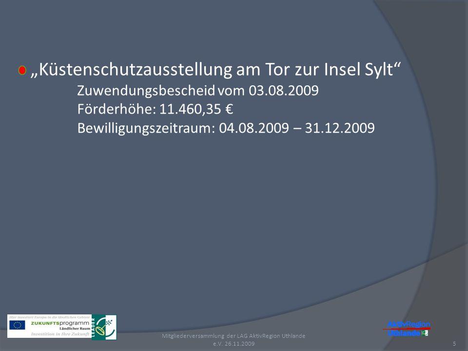 Küstenschutzausstellung am Tor zur Insel Sylt Zuwendungsbescheid vom 03.08.2009 Förderhöhe: 11.460,35 Bewilligungszeitraum: 04.08.2009 – 31.12.2009 5