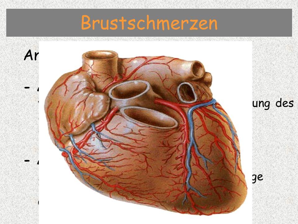 Angina pectoris / Herzinfarkt - Angina pectoris vorübergehende Sauerstoffunterversorung des Herzmuskels infolge Herzkranzgefässverengung - Akuter Herzinfarkt Absterben von Herzmuskelgewebe infolge Verschluss von Herzkranzgefässen und ausbleibender Sauerstoffzufuhr Brustschmerzen
