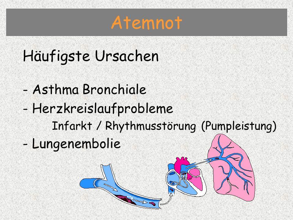 Häufigste Ursachen - Asthma Bronchiale - Herzkreislaufprobleme Infarkt / Rhythmusstörung (Pumpleistung) - Lungenembolie Atemnot