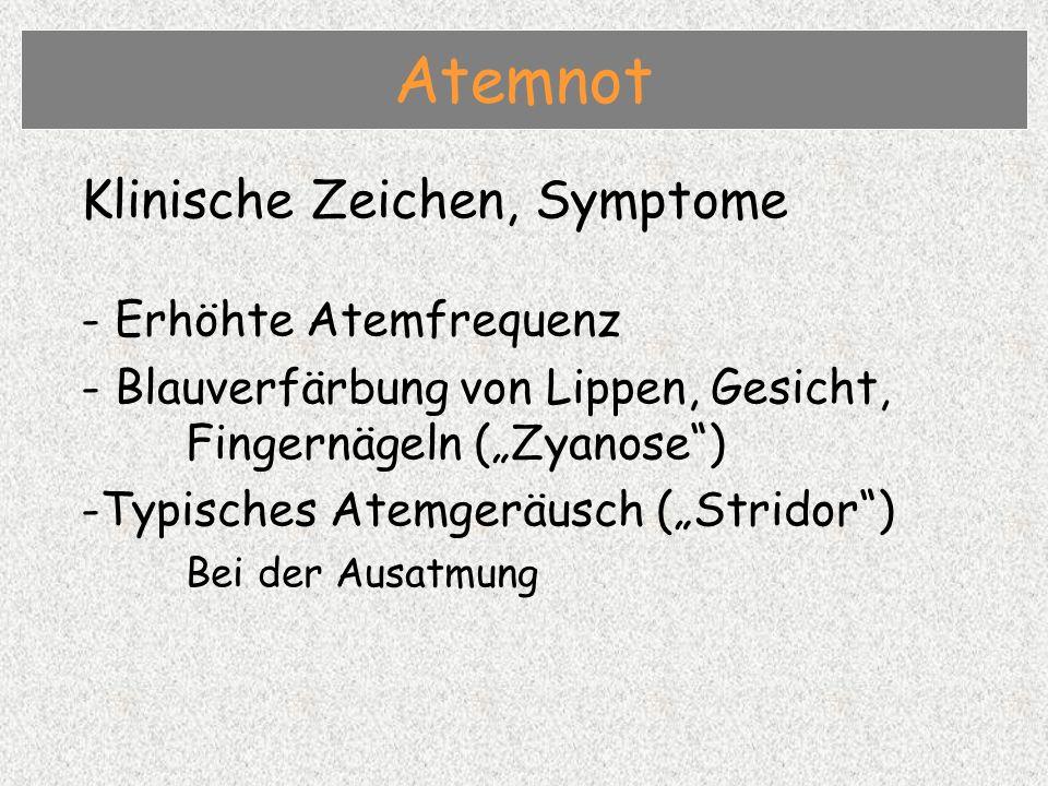 Klinische Zeichen, Symptome - Erhöhte Atemfrequenz - Blauverfärbung von Lippen, Gesicht, Fingernägeln (Zyanose) -Typisches Atemgeräusch (Stridor) Bei der Ausatmung Atemnot