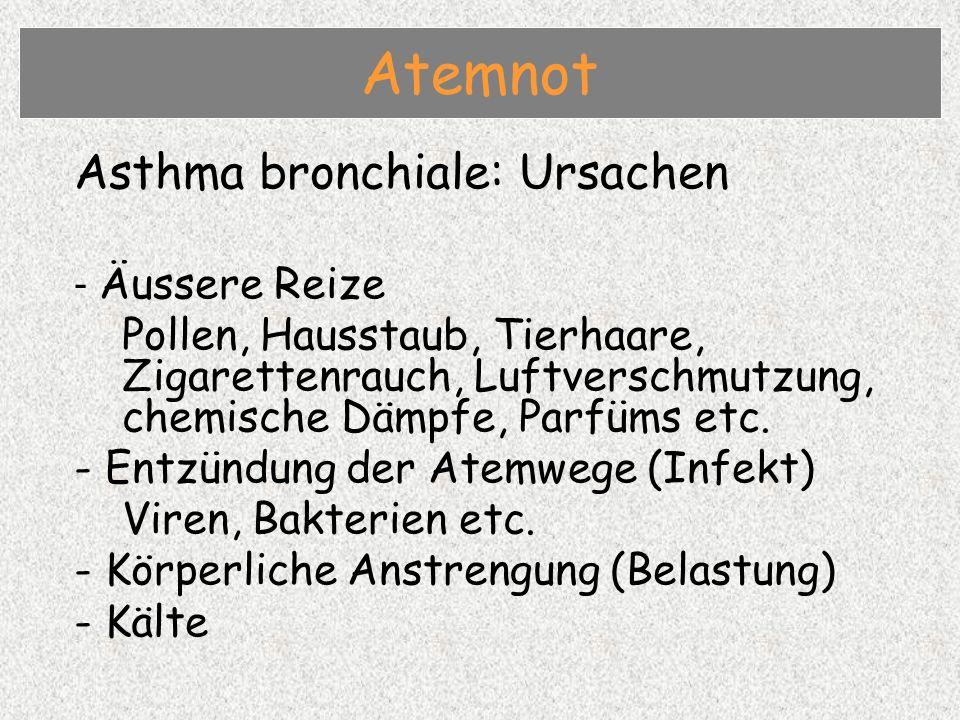 Asthma bronchiale: Ursachen - Äussere Reize Pollen, Hausstaub, Tierhaare, Zigarettenrauch, Luftverschmutzung, chemische Dämpfe, Parfüms etc.